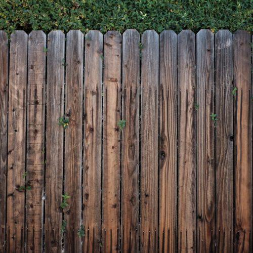 Manieren om je tuin te omheinen